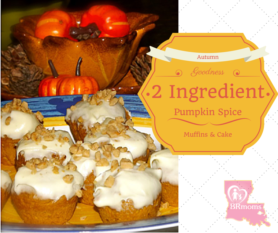 2 Ingredient Pumpkin Spice Muffins