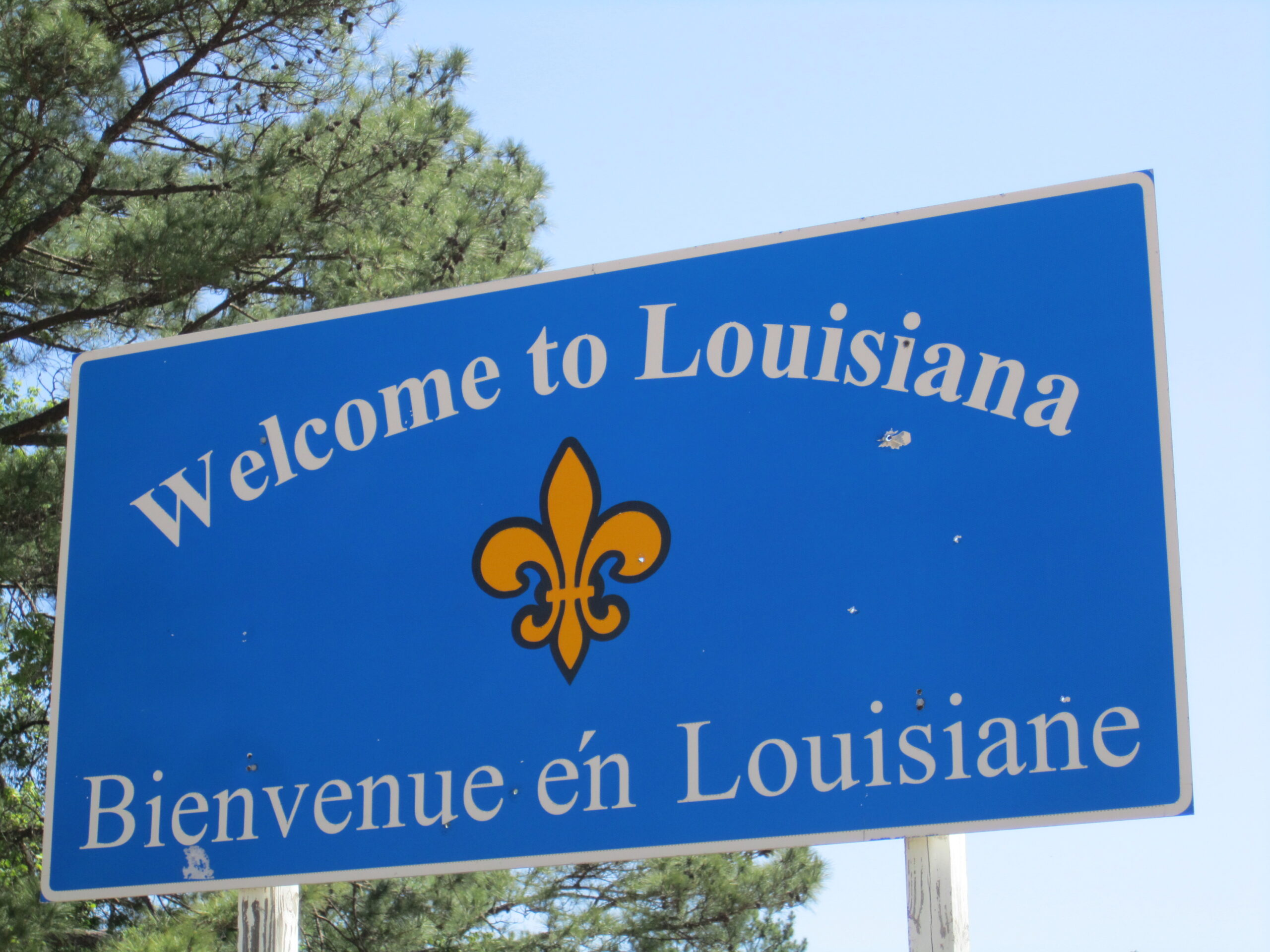 What i have learned about louisiana so far for What to do in new orleans louisiana