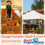 Baton Rouge Pumpkin Patch & Corn Maze Guide