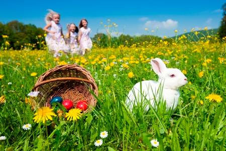 Liuzza Land Public Days & Easter Egg Hunt