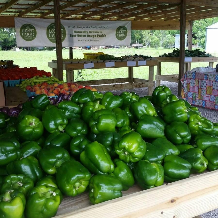 Lucket Farms Baton Rouge