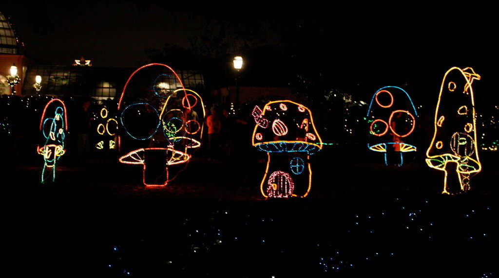 Holiday Spirit at the Reflections of the Season Christmas Light Display.