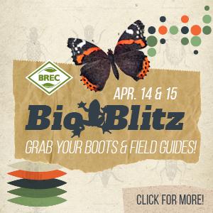 BREC Bio Blitz Baton Rouge
