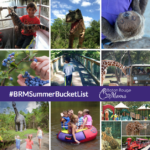 30 Things To Do in Baton Rouge & Beyond #BRMSummer