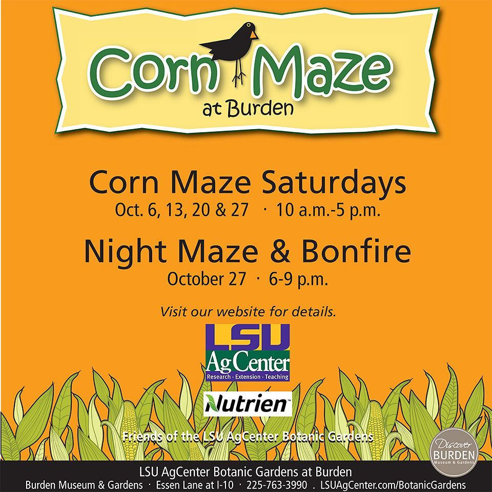 LSU Baton Rouge Corn Maze