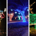 Brec's Baton Rouge Zoolights Making Spirits Bright